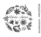herbs and spices collection.... | Shutterstock .eps vector #444109246