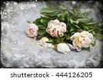 pink  peonies on vintage... | Shutterstock . vector #444126205