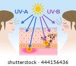 mechanism of sunburn and aging...   Shutterstock .eps vector #444156436