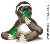 sloth cute cartoon eating a...   Shutterstock .eps vector #444236572