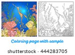 adult coloring book. coloring... | Shutterstock .eps vector #444283705