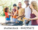 multi ethnic group of friends... | Shutterstock . vector #444295672