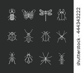set of bug line vector icons.... | Shutterstock .eps vector #444343222