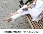 summer outfit  street fashion... | Shutterstock . vector #444517042