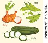 set of vegetables mix vector... | Shutterstock .eps vector #444650482