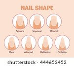 nail forms. female manicure.... | Shutterstock .eps vector #444653452