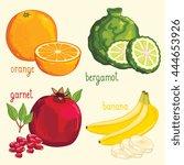 set of fruit mix vector... | Shutterstock .eps vector #444653926