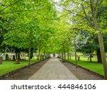 front door and perspective with ... | Shutterstock . vector #444846106