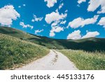 summer trail | Shutterstock . vector #445133176