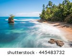 wild caribbean beach of... | Shutterstock . vector #445483732