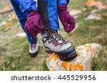 hiker tying boot laces on rock  ... | Shutterstock . vector #445529956