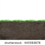 soil with roots and grass... | Shutterstock . vector #445583878