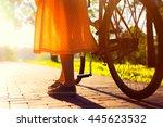 girls legs and long vintage...   Shutterstock . vector #445623532