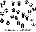 footprints vector set   Shutterstock .eps vector #44562649