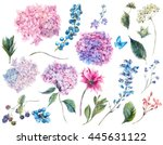 Stock photo set vintage watercolor elements of blooming hydrangea and garden flowers leaves branches flowers 445631122