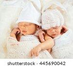 little babies hold each other...   Shutterstock . vector #445690042