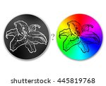 flower illustration on... | Shutterstock . vector #445819768
