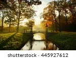 trees and river at a foggy ... | Shutterstock . vector #445927612