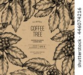coffee tree illustration.... | Shutterstock .eps vector #446074216