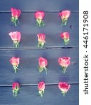 pink baby roses on the wooden...   Shutterstock . vector #446171908
