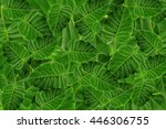 bo leaf  grene leaf | Shutterstock . vector #446306755
