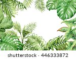 hand drawn  branches and leaves ... | Shutterstock . vector #446333872