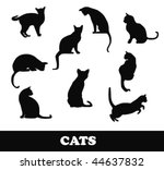 Stock vector cats silhouette 44637832