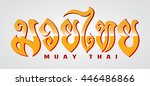 muay thai letter on grey... | Shutterstock .eps vector #446486866