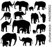 vector illustration of elephant ... | Shutterstock .eps vector #446558002