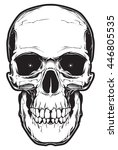 the image of the skull. vector... | Shutterstock .eps vector #446805535