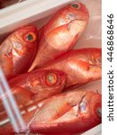 Small photo of Raw alfonsino