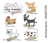 dog breeds 5 | Shutterstock .eps vector #44687293