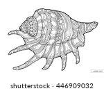 seashell isolated. vector... | Shutterstock .eps vector #446909032