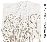 crocuses. flowers painted line... | Shutterstock .eps vector #446924728