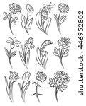 collection of outlined flowers. ... | Shutterstock .eps vector #446952802