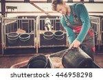 Young Farmer Feeding Calf In...