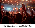 crowd in front of concert stage ... | Shutterstock . vector #447004276