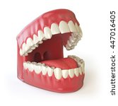 teeth or dentures isolated on... | Shutterstock . vector #447016405