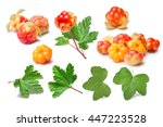 Set Of Cloudberries  Rubus...