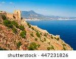 beautiful sea landscape of... | Shutterstock . vector #447231826
