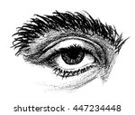 hand drawn eye with a large... | Shutterstock .eps vector #447234448