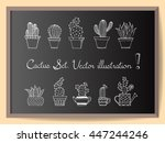 hand drawn cactus set in simple ... | Shutterstock .eps vector #447244246