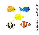 sea color flat design fish ... | Shutterstock .eps vector #447261592