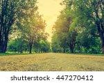 vintage tone blur image of walk ... | Shutterstock . vector #447270412