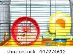 Stock photo cute hamster sitting in a cage and looking through the lattice cells 447274612