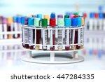 tubes prepared for centrifuge... | Shutterstock . vector #447284335