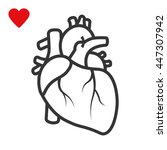 realistic heart icon isolated... | Shutterstock .eps vector #447307942