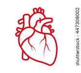 realistic heart icon isolated... | Shutterstock .eps vector #447308002