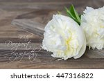 sympathy text card with white... | Shutterstock . vector #447316822