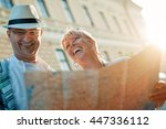 couple of tourists.mature... | Shutterstock . vector #447336112